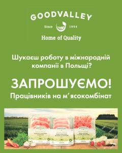Goodvalley, робота в міжнародній компанії в Польщі
