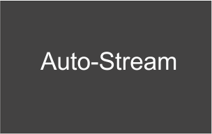 Auto-Stream, Магазин