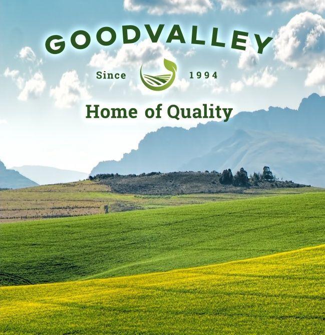 Goodvalley - робота в Польщі