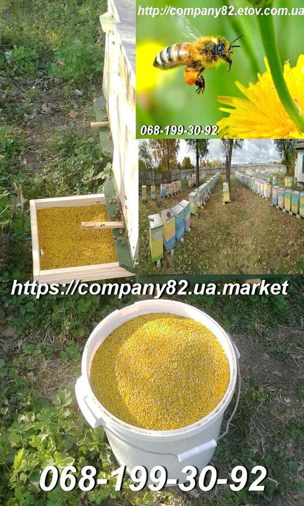 Бджолиний пилок з пасіки